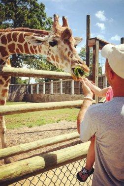ZooWorld Zoological Conservatory