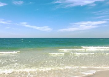 Best Places for a Beach Day in Cape San Blas and Port St. Joe