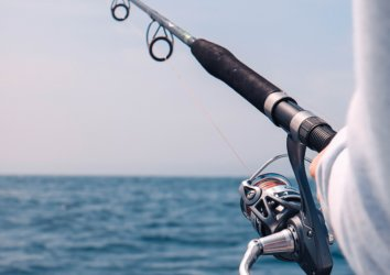 The Ultimate Guide to Fishing in Destin, Florida