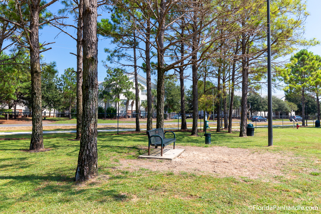 Destin Things To Do - Destin Dog Park - Original Photo