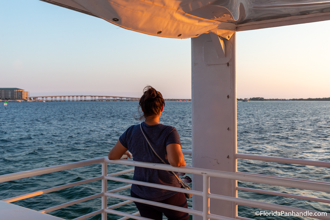 Destin Things To Do - Southern Star Dolphin Cruise - Original Photo