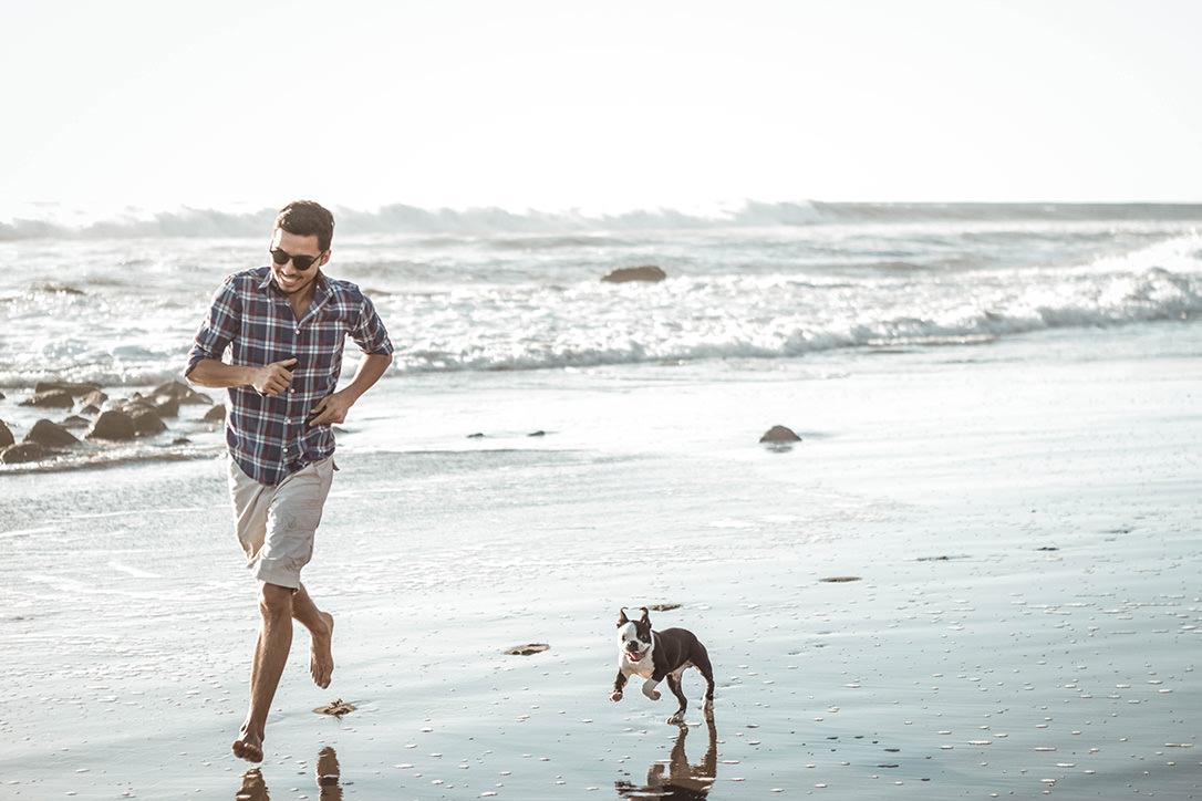 8 Dog-Friendly Activities to Enjoy in Pensacola, FL