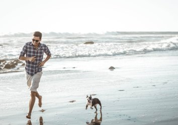 8 Dog-Friendly Activities to Enjoy in Pensacola, FL