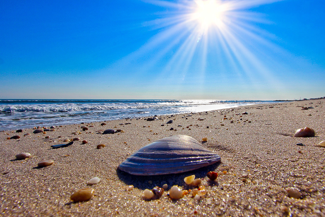 Cape San Blas Top 10 Attractions: Experience the Best of the Forgotten Coast