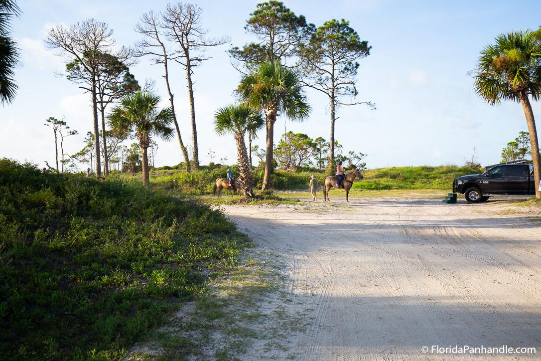 Cape San Blas Things To Do - Broke A Toe Horseback Riding on the Beach - Original Photo