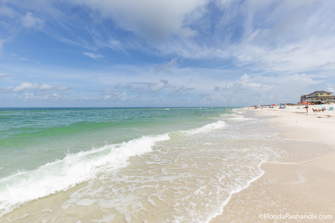 Cape San Blas Things To Do - Cape Palms Park - Original Photo