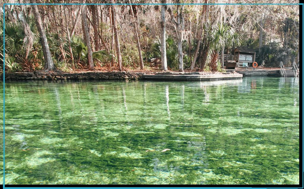 wekiwa-florida-freshwater-spring-in-daytime
