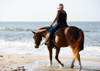 5 Reasons to Go Horseback Riding on the Beach in Cape San Blas
