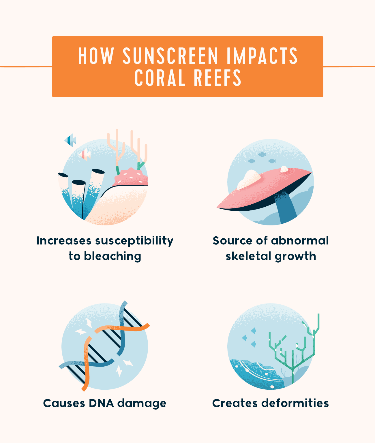 how sunscreen impacts coral reefs