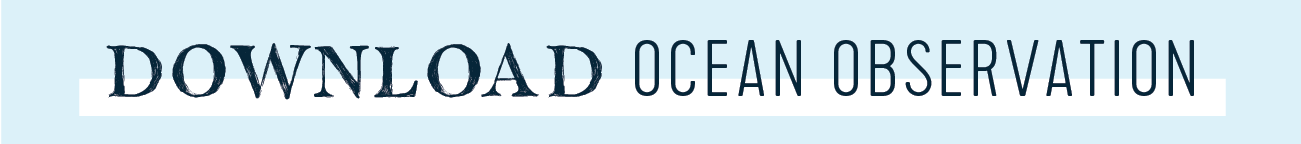 ocean observations download button