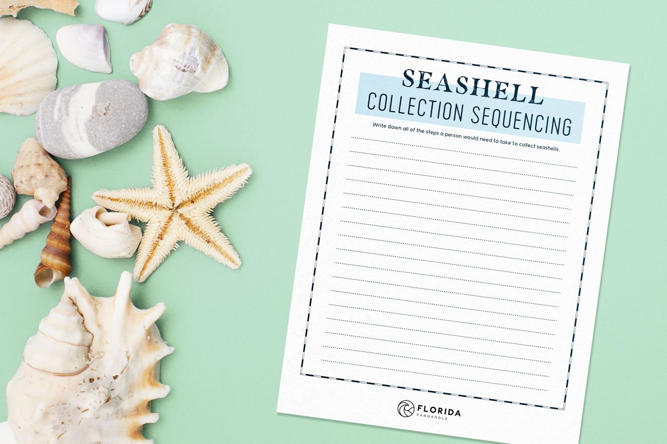 seashell collection sequencing
