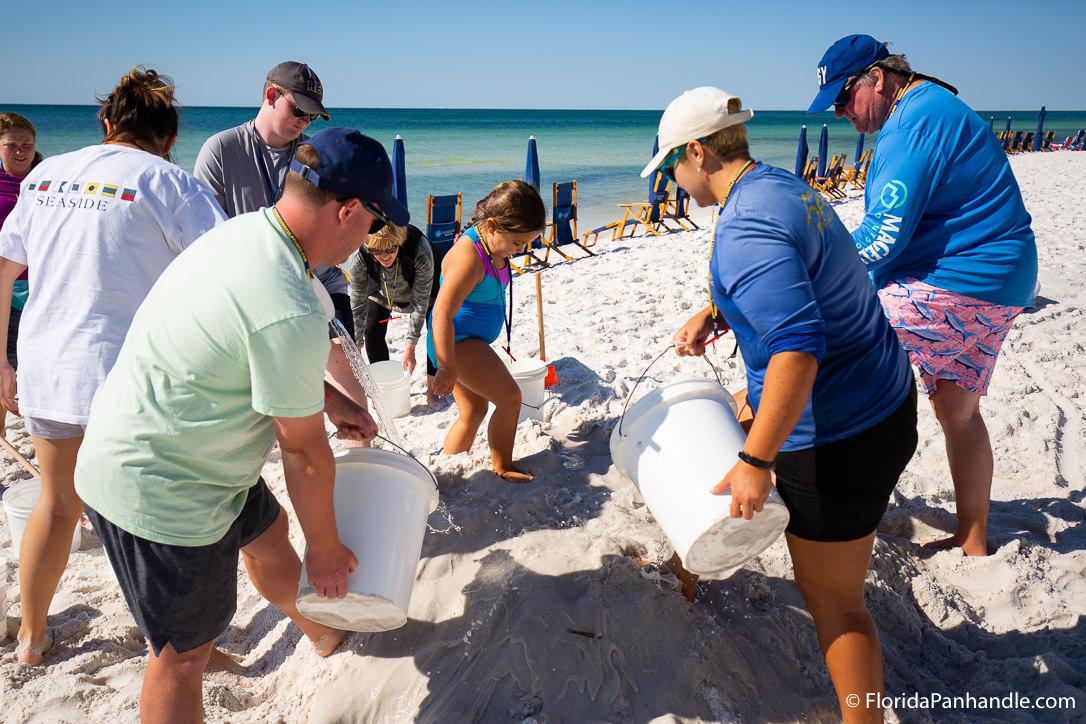 30A Things To Do - Beach Sand Sculptures - Original Photo