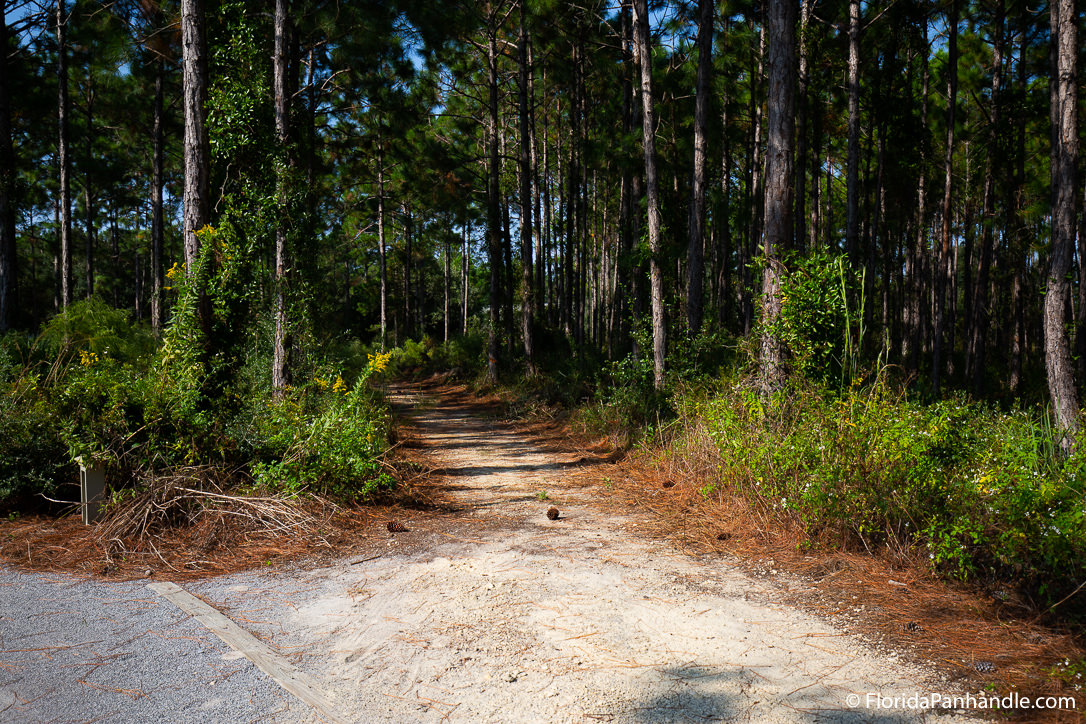 30A Things To Do - Watersound Trail - Original Photo