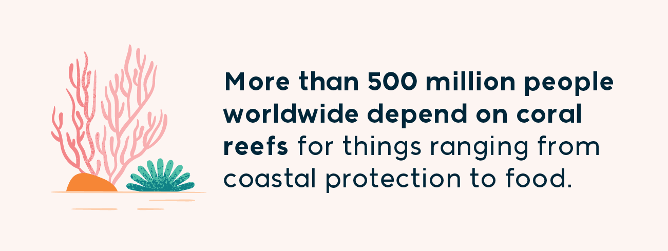 more than 500 million people worldwide depend on coral reefs for things ranging from coastal protection to food