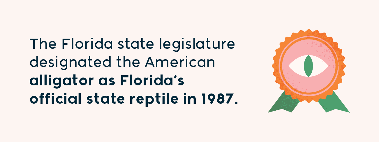 the Florida state legislature designated the American alligator as Florida's official state reptile in 1987
