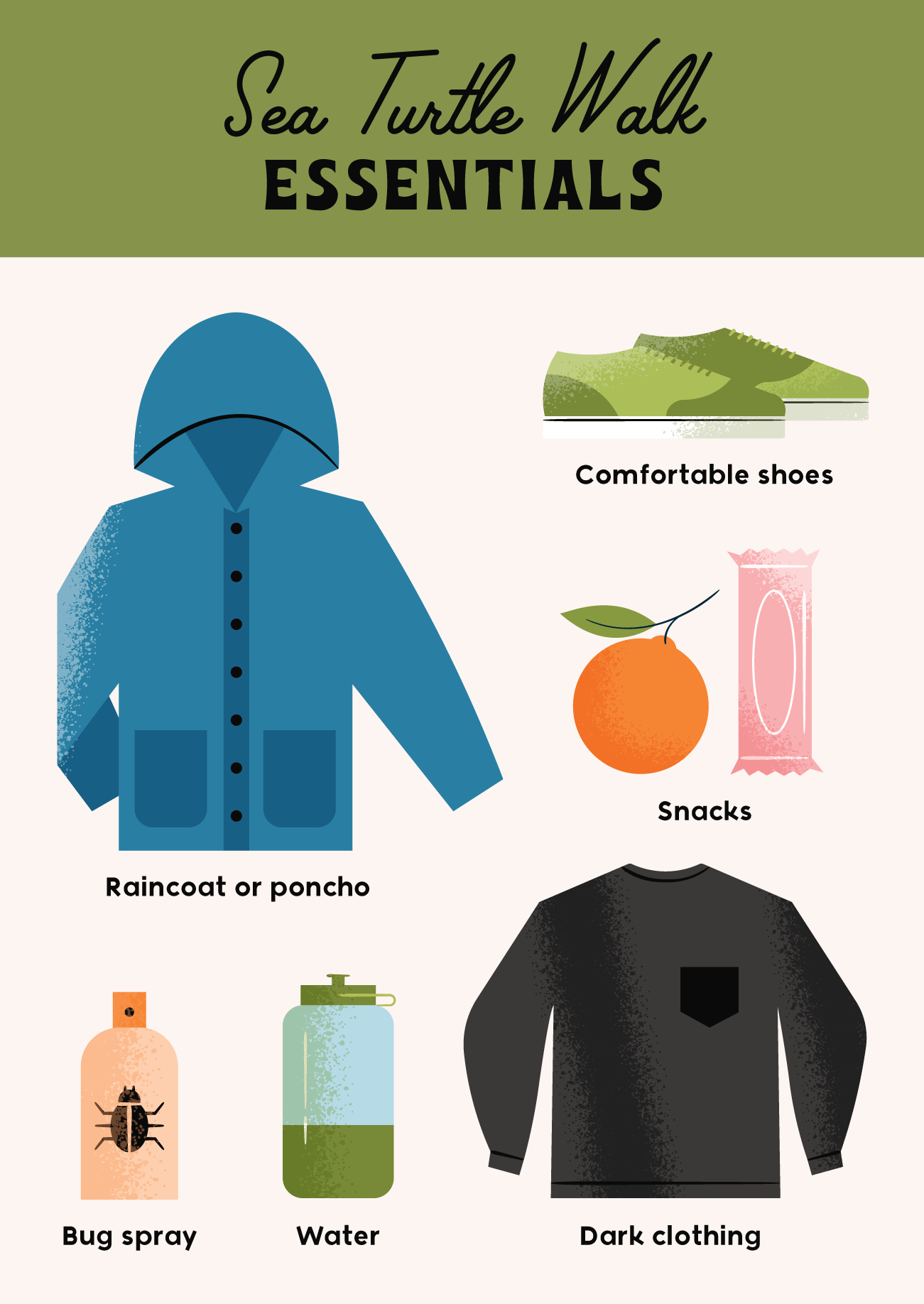 sea turtle walk essentials