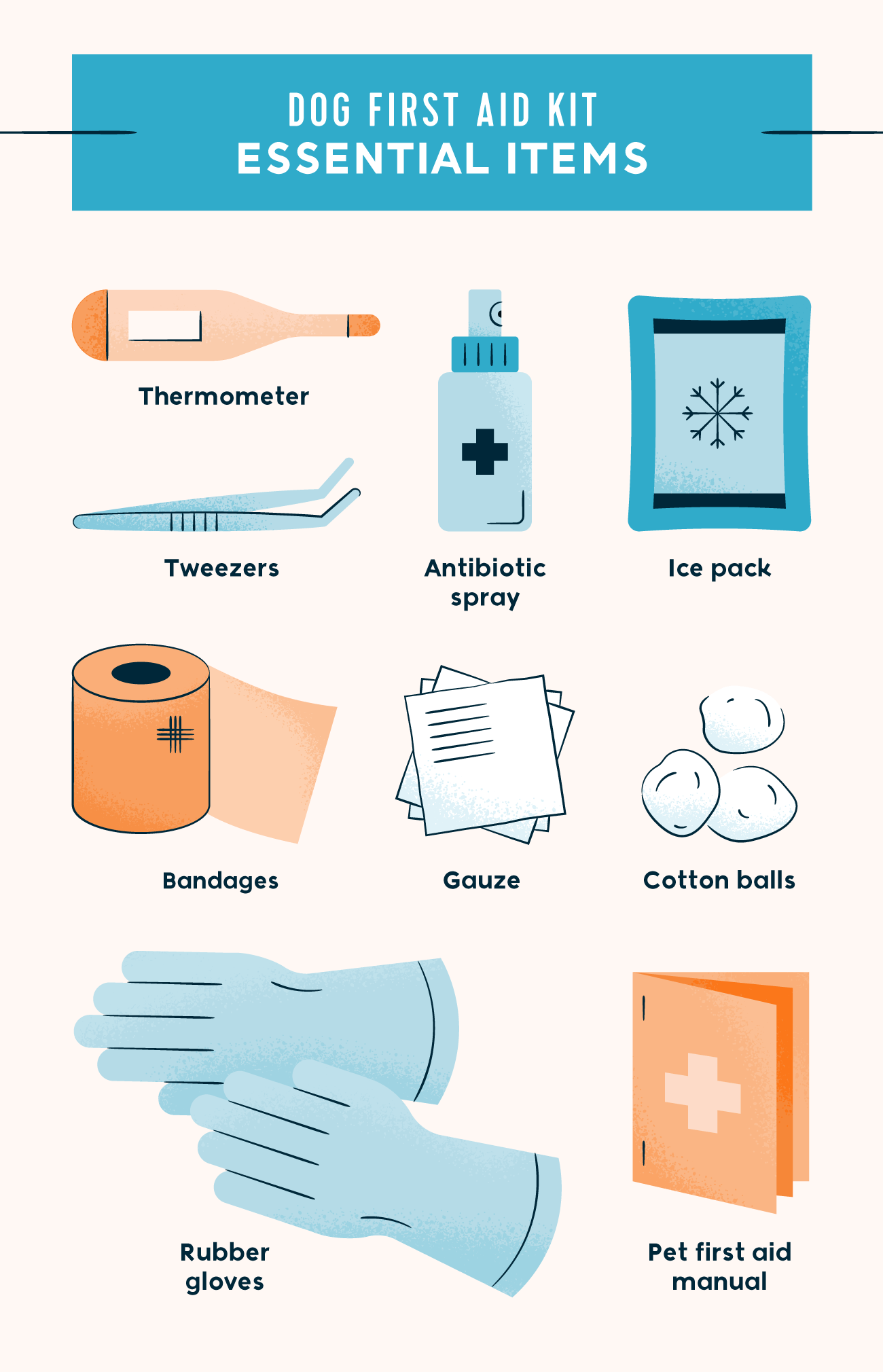 dog first aid kit essential items