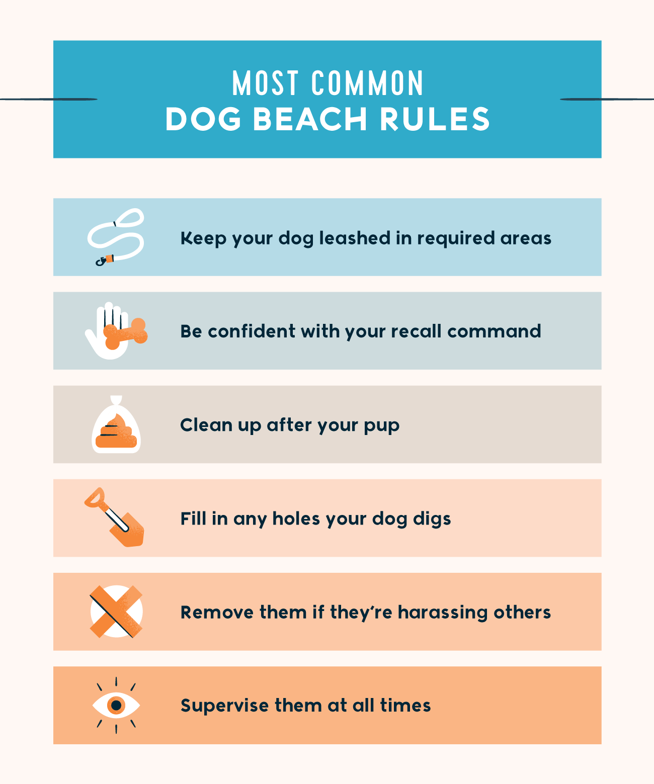 most common dog beach rules