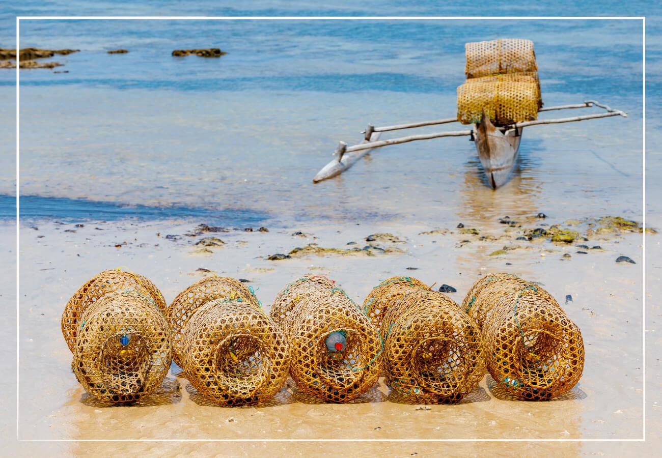 picture of shrimp traps